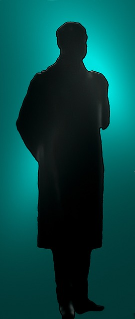 silhouette-407659_640